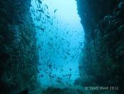 Fish Rock Cave Deep Entrance